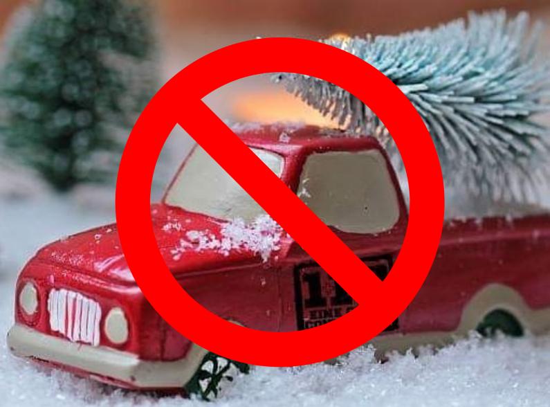 Kein Sammeln der Weihnachtsbäume